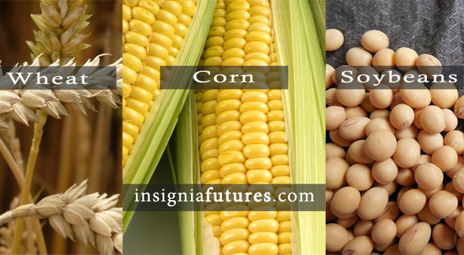 Corn, Soybeans & Wheat futures prices continue falling this week.